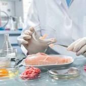 consultoria para inspecciones sanitarias en madrid