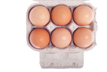 analisis de alimentos color huevo