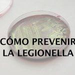 prevenir la legionella