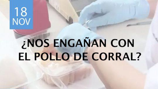análisis de pollo de corral