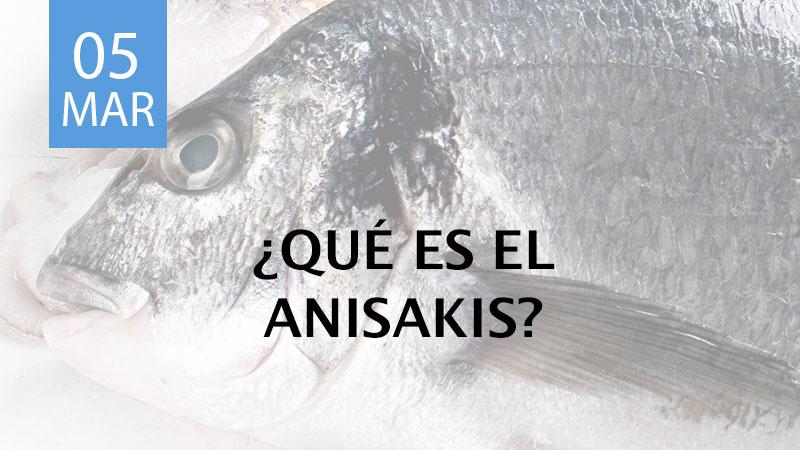 qué es el anisakis